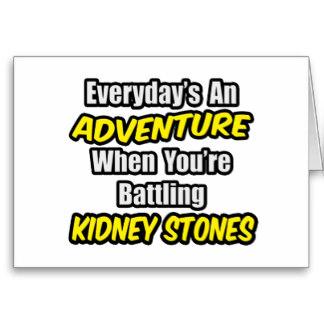 everydays_an_adventure_kidney_stones_card-rbc573ca4cd3a481c87d46ec98244a354_xvuak_8byvr_324